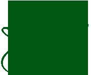 lynn_sig_green