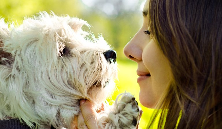 Interesting Interview on Animal Communication