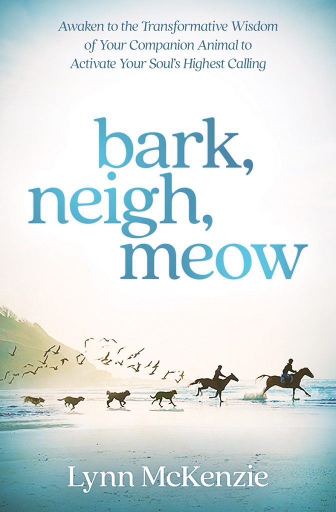 Bark, Neigh, Meow: Awaken to the Transformative Wisdom of Your Companion Animal to Activate Your Soul's Highest Calling